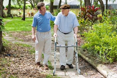 A Stroll in the Garden