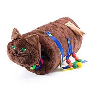 Sensory Cat